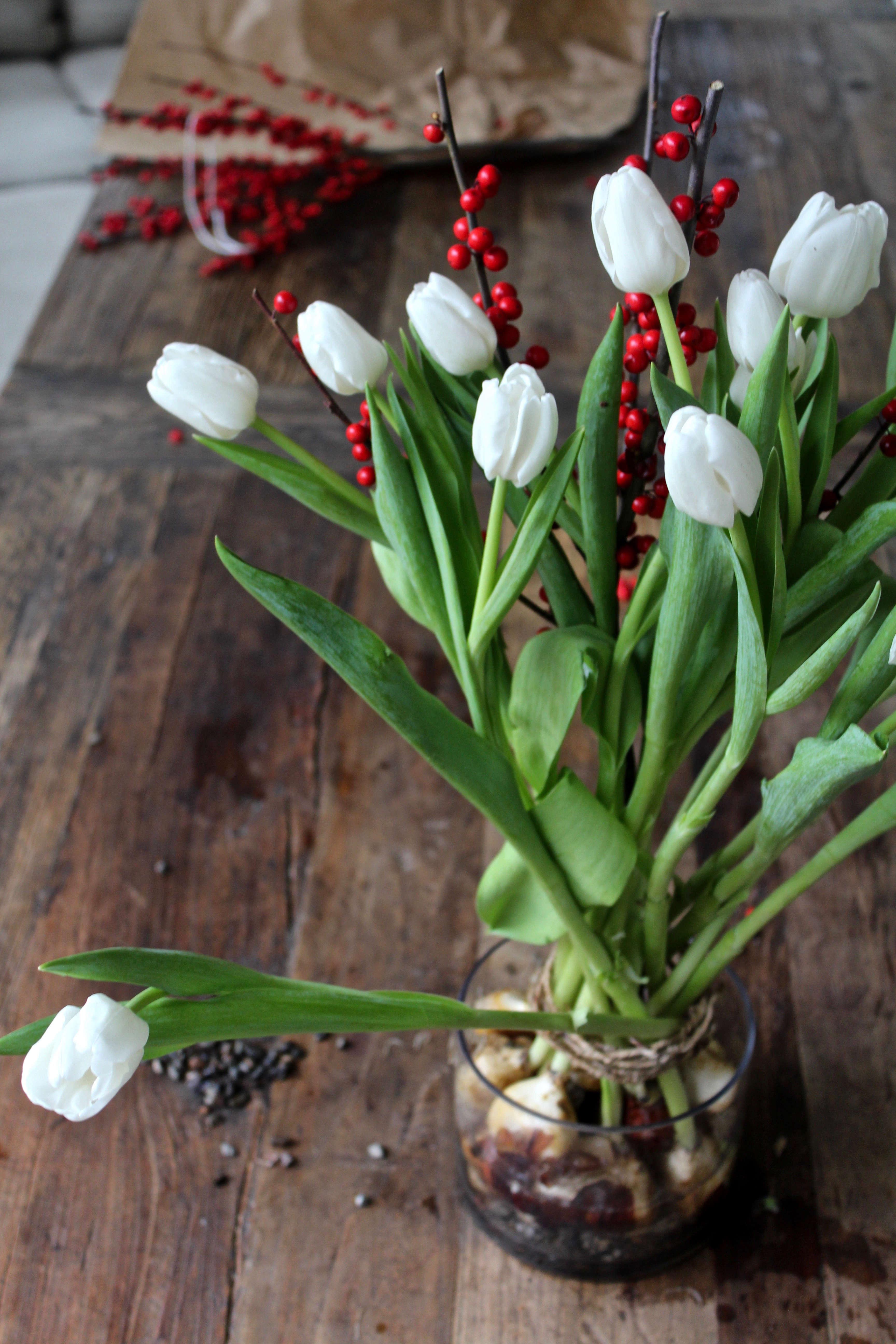 tulips-on-the-bulb-michelle-slatalla-img-3777