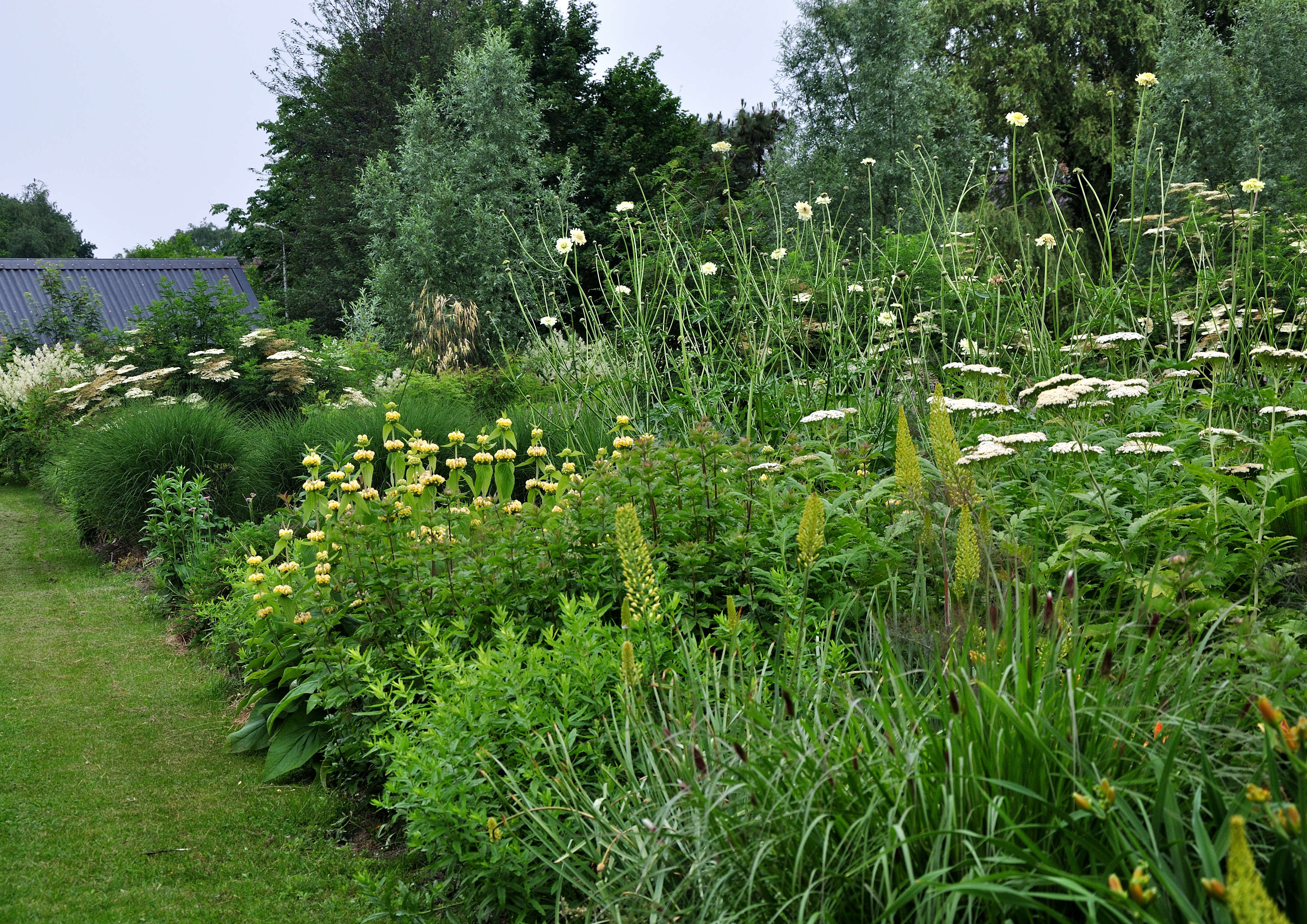 One of Frank&#8\2\17;s gardens in summer. Though lust and leafy, it still maintains a textured feel.