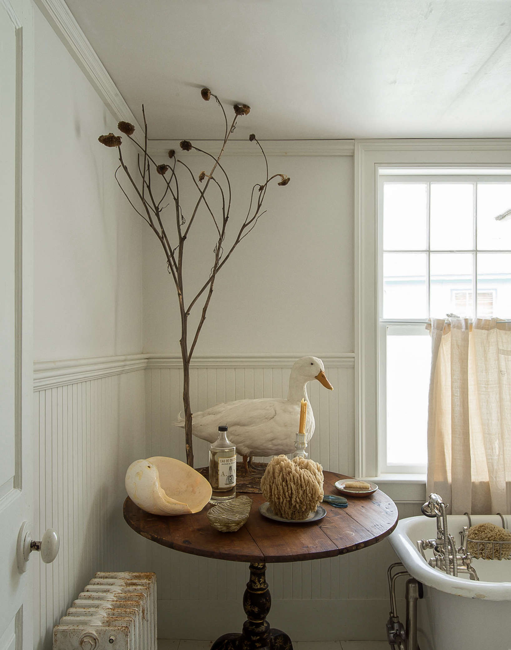 John Derian Bathroom duck