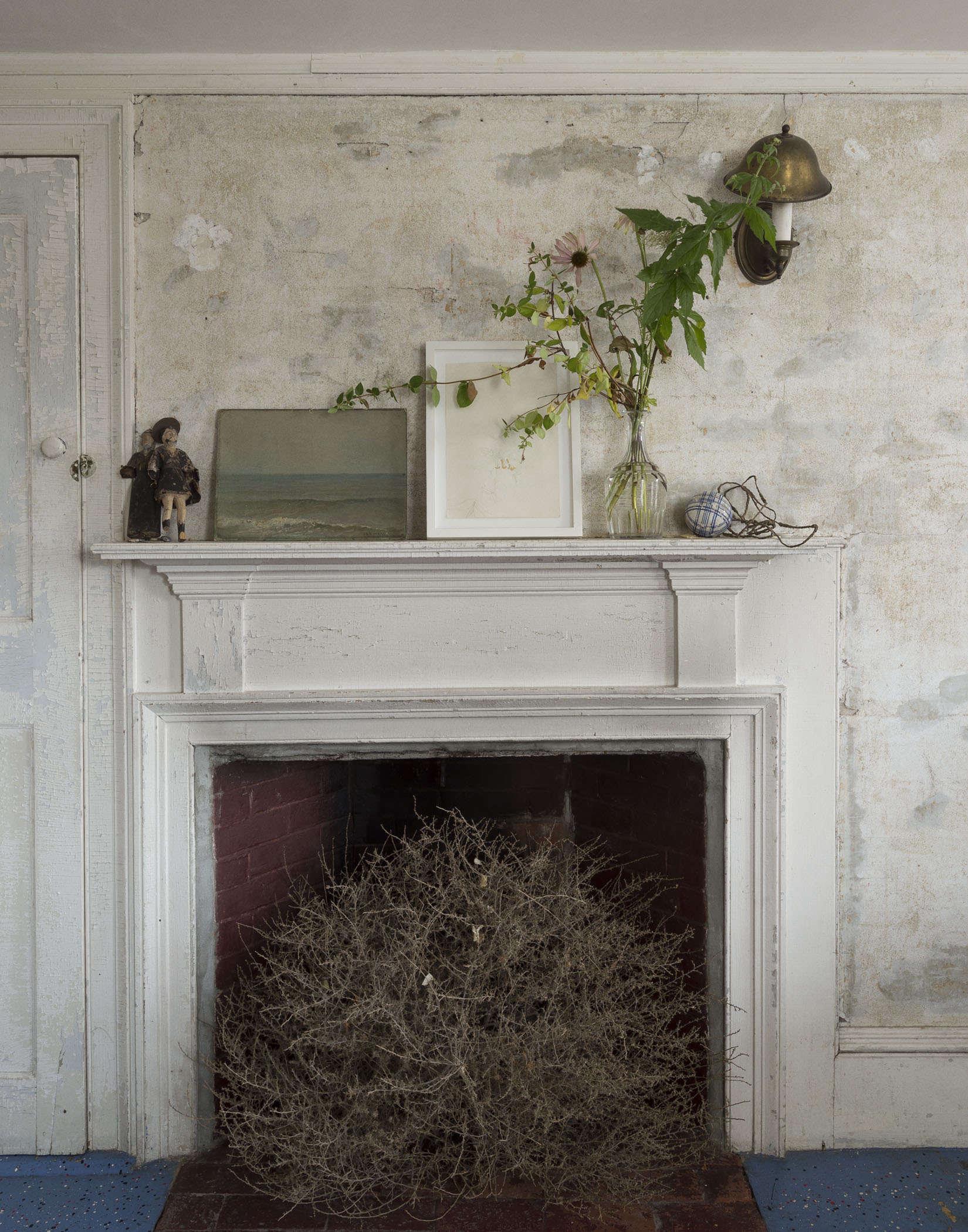 John Derian Faded Flowers 4