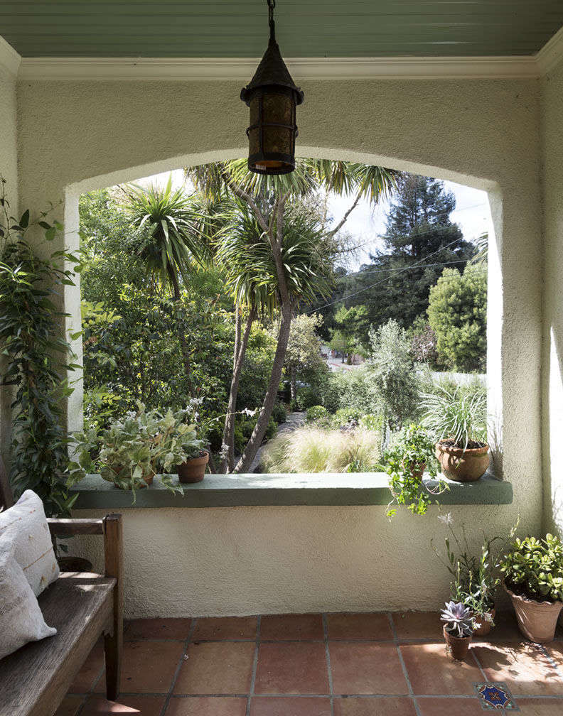 Michelle's potted plants on porch by Matthew Williams