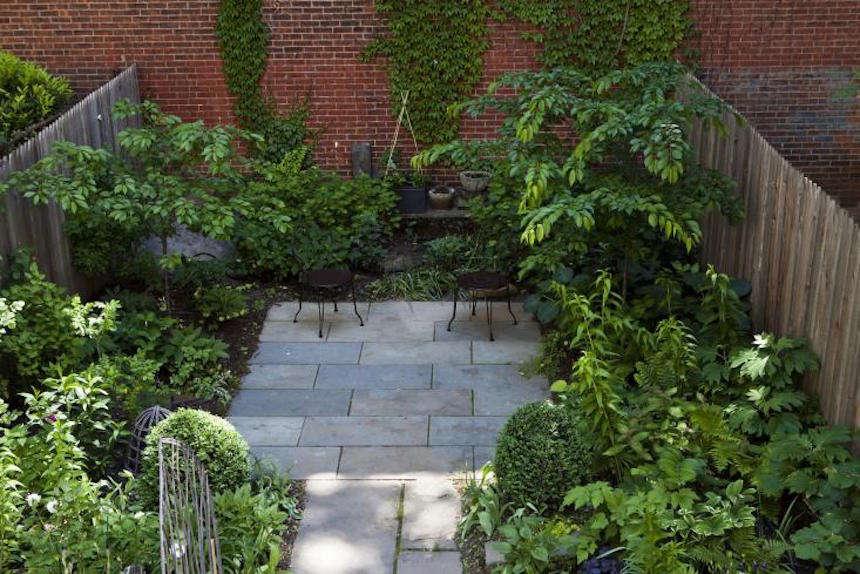 brooklyn-budget-garden-townhouse-backyard-sophie-gee-nicole-franzen
