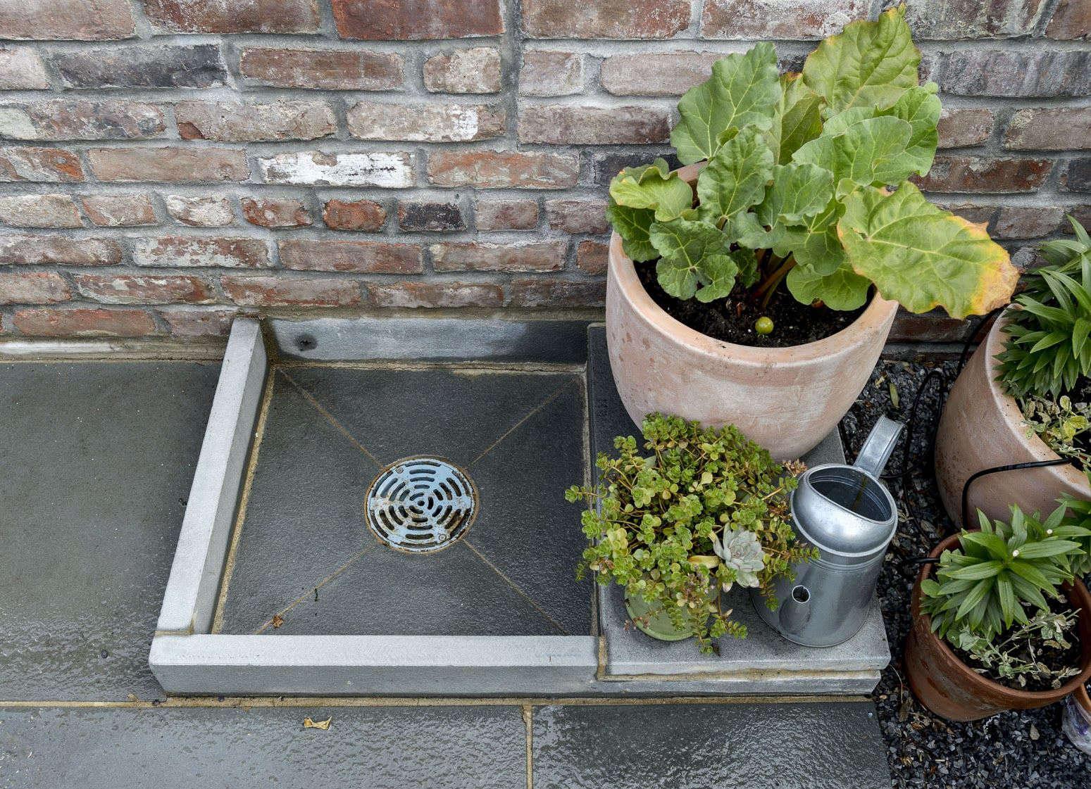 Carroll Gardens Brooklyn Lettuces in Pot Matthew Williams Gardenista-book 2