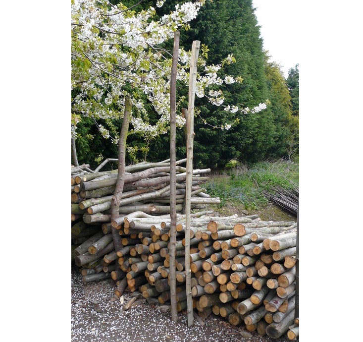 For DIY fences,Chestnut Bracing Rails are £7.50 from Natural Fencing.