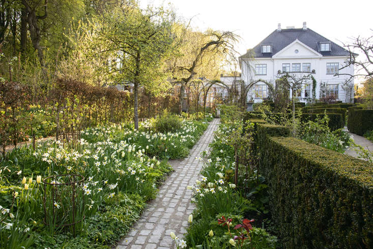 Living walls and considered paving keep this garden moving along in winter, before the onslaught of spring bulbs.