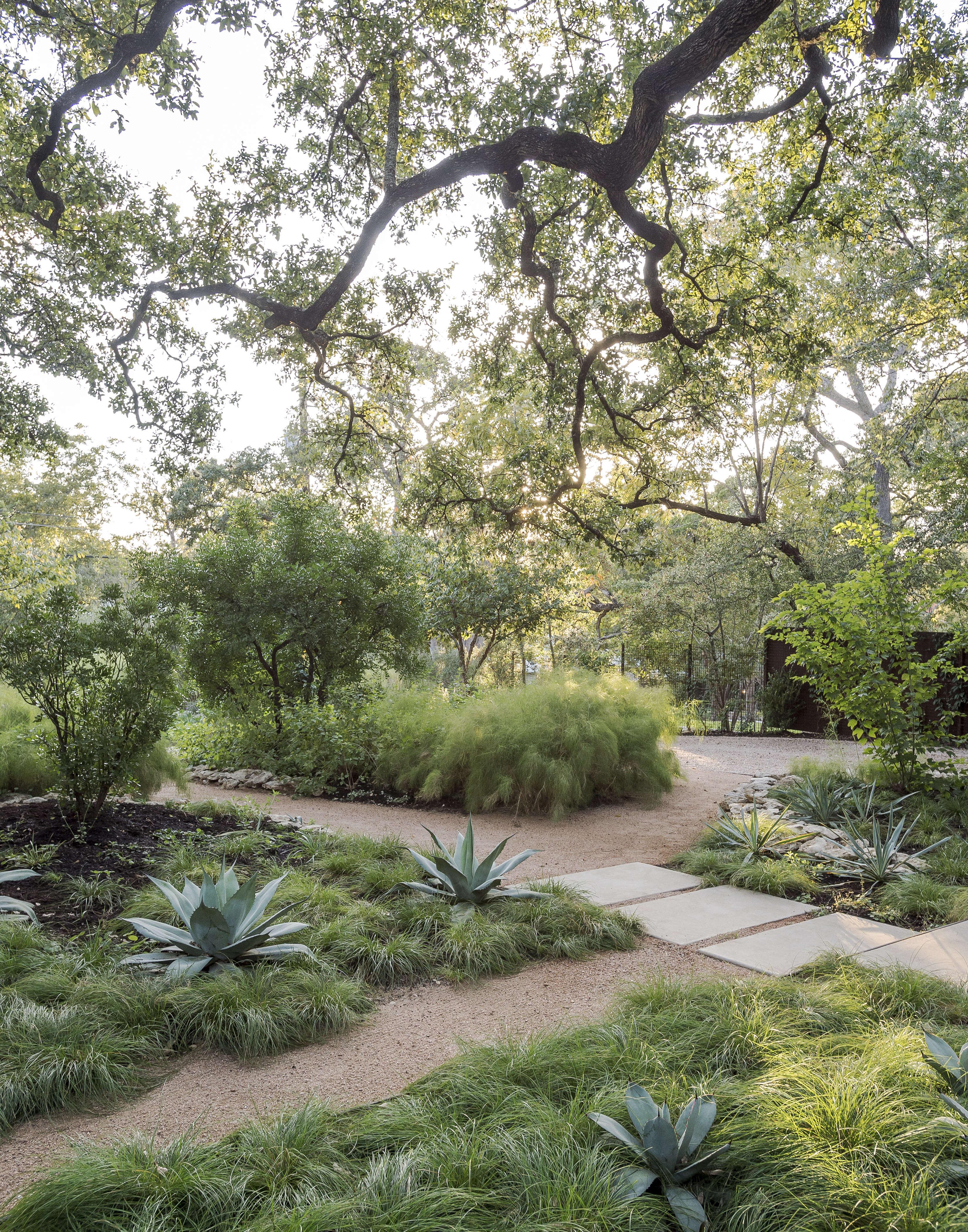 Photograph by Matthew Williams for Gardenista.