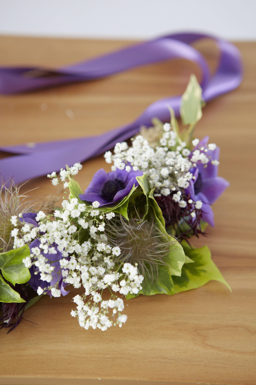 electric-daisy-flower-farm-britt-willoughby-dyer-BN2A0520