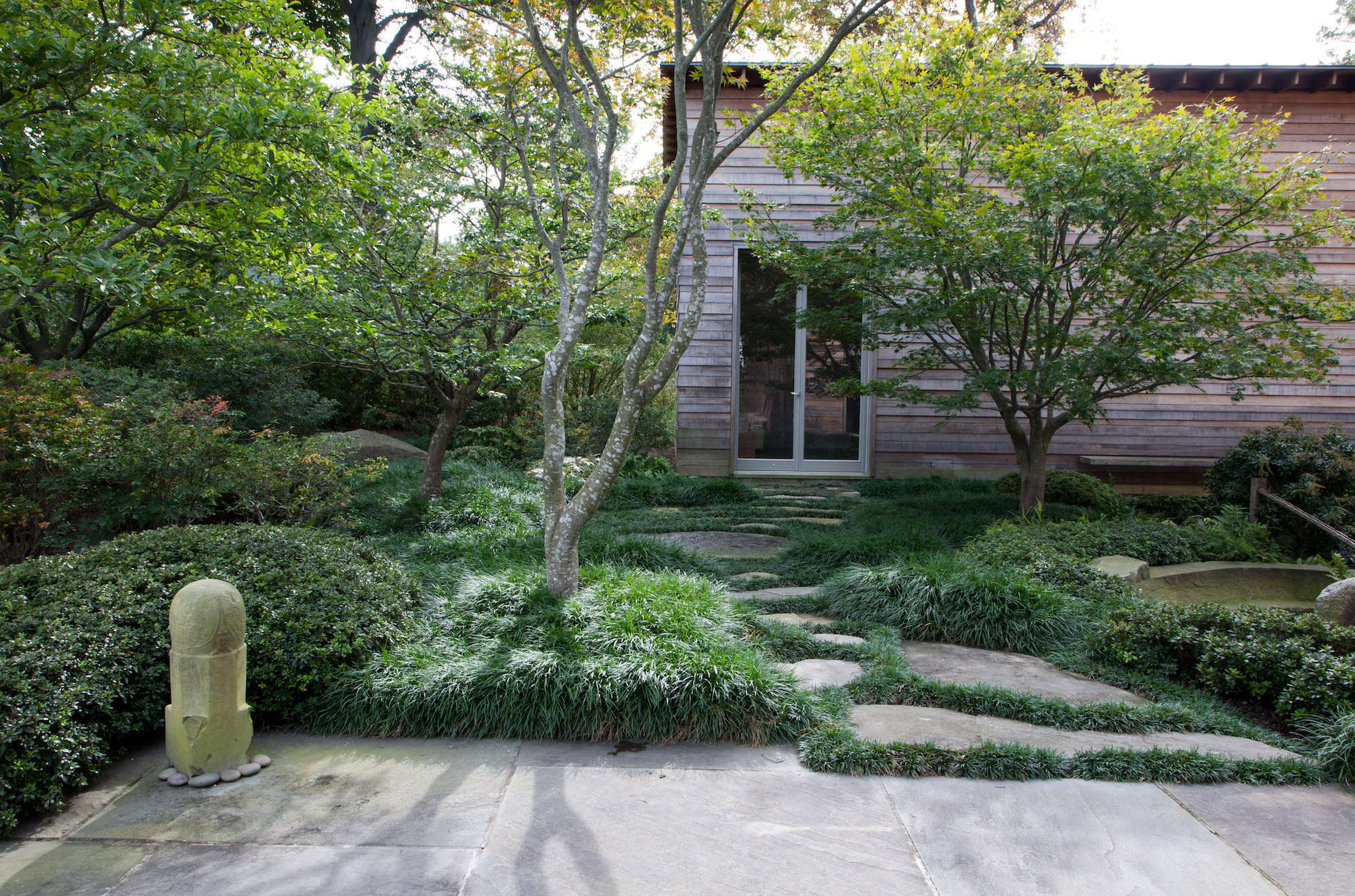 From a stone terrace off the kitchen of the main residence, the forest walk leads to a detached studio behind the house. Keane used mondo grass liberally throughout the garden, in two varieties: standard mondo grass (as shown around the base of the Japanese maple at front), and a dwarf variety between the pathway stones.