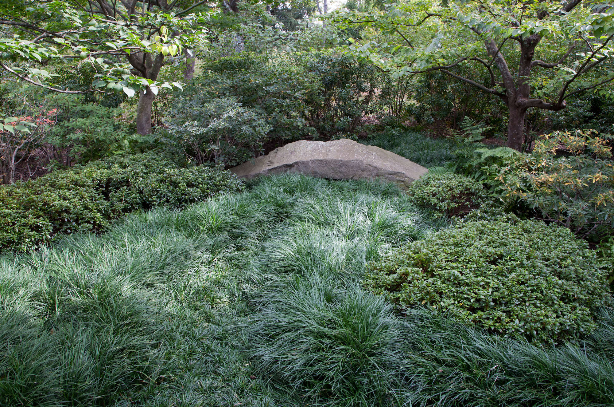Keane used bluestone from the Catskills for both the large, flat slabs that comprise the forest walk and the small boulders that border the ocean garden, below.