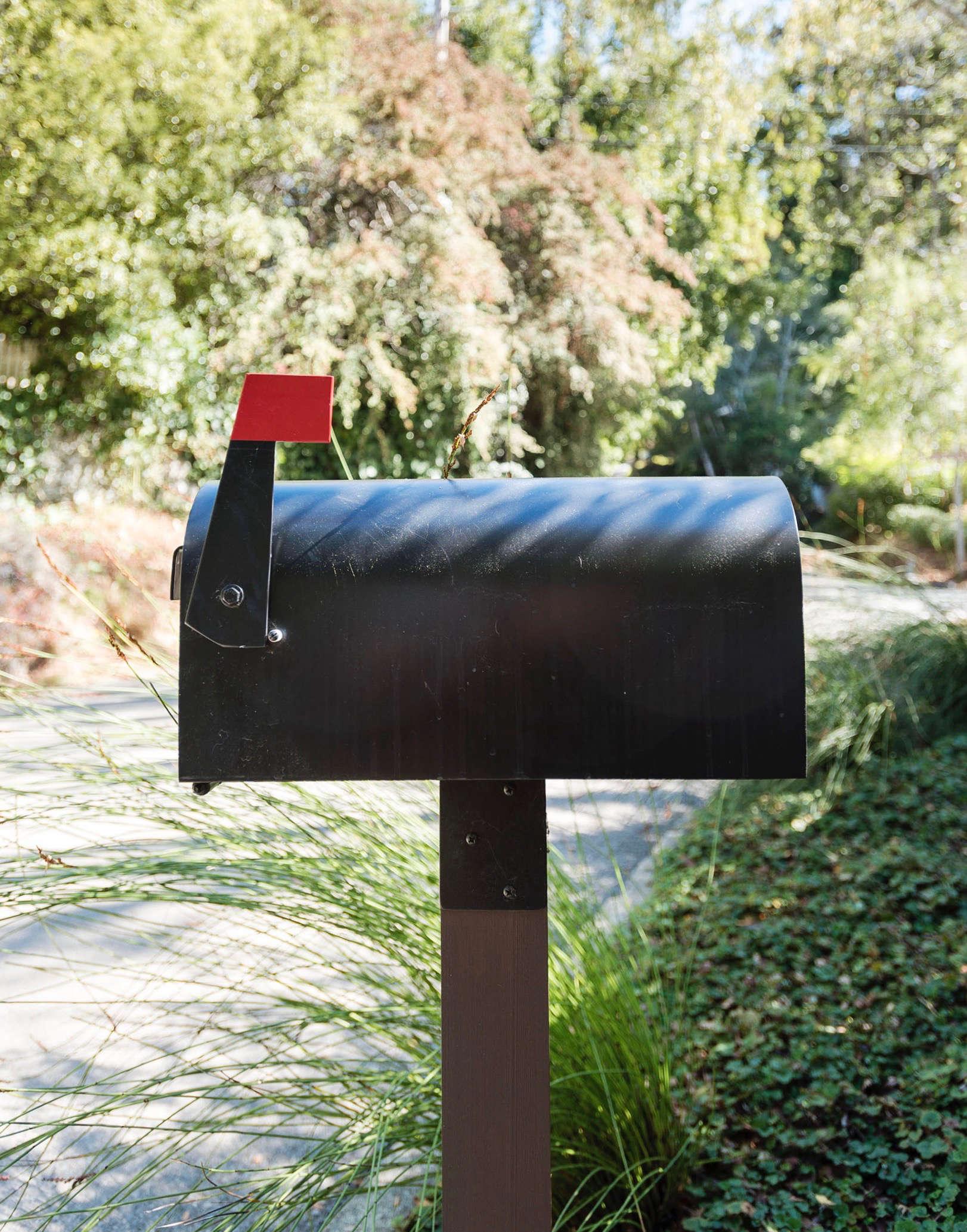 veeders-mailbox-matthew-williams-DSC-0463