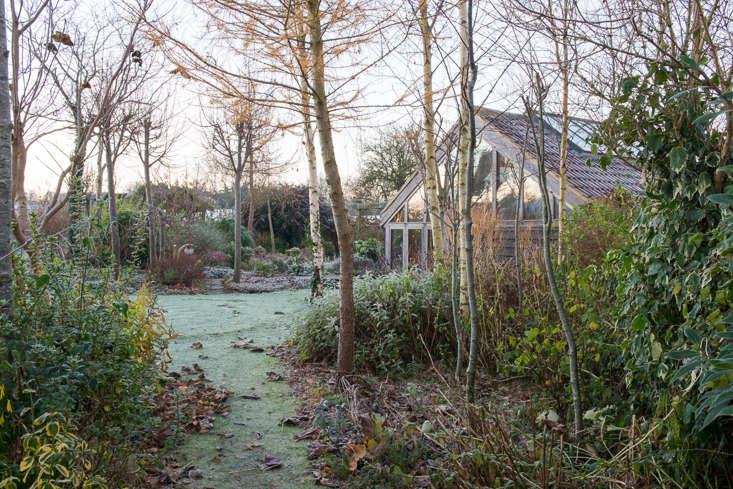 winter-garden-heather-edwards-1
