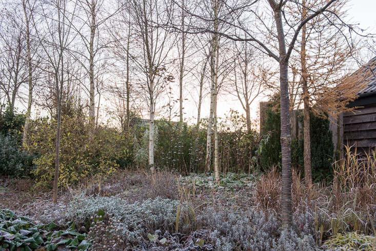 winter-garden-heather-edwards-2