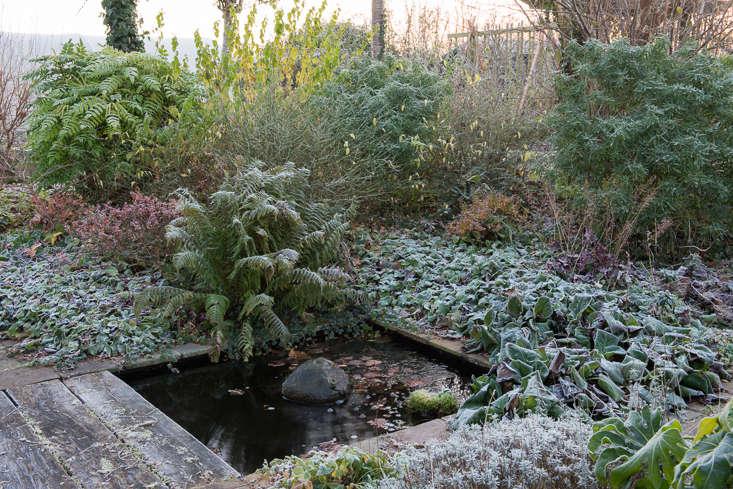 winter-garden-heather-edwards-6
