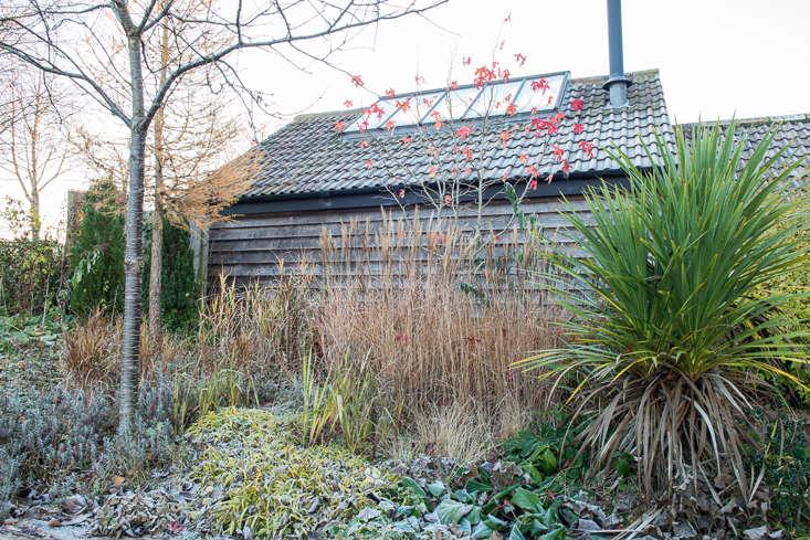 winter-garden-heather-edwards-7