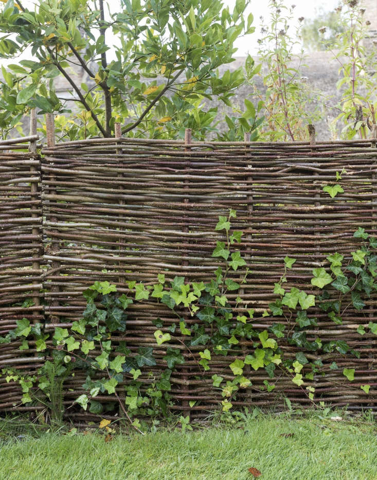 Woven fencing can largely be divided into two types—hurdles which are moveable panels that can be slotted into the ground and then bound to other hurdles with posts, or continuous woven fencing, which, as the name suggests, is installed onsite to any dimensions. Photograph by Matthew Williams for Gardenista.