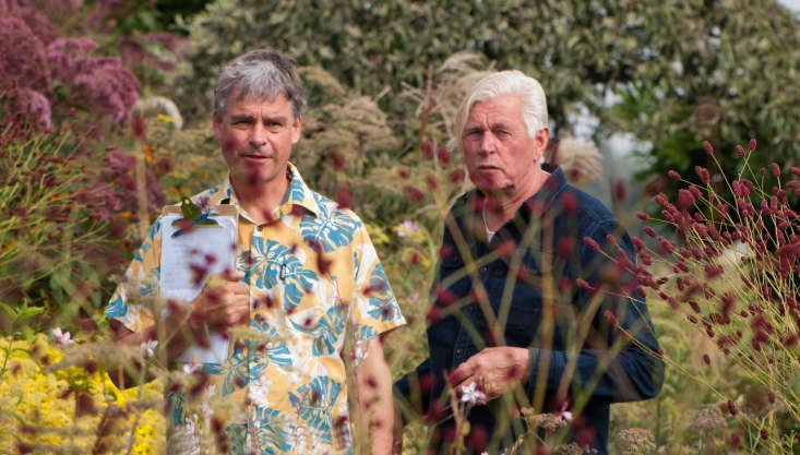 cAbove: In Planting the Piet Oudolf Way we are given a ringside seat at Hummelo at its peak in September. Kingsbury and Oudolf wander the gardens picking out key focus areas and breaking down the planting style, pinpointing why certain combinations work. There are plenty of less studious moments too, where you can be mesmerized by the exquisite beauty of Oudolf's garden. We could happily watch a feature-length version of these videos.