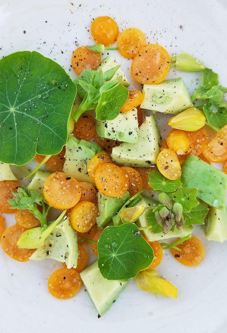 cape-gooseberry-salad-marie-viljoen