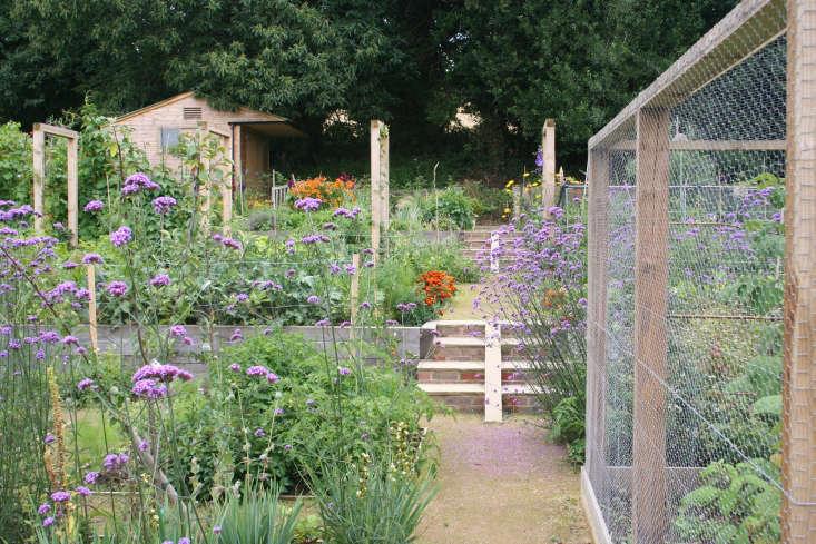 Kitchen garden, Sussex England
