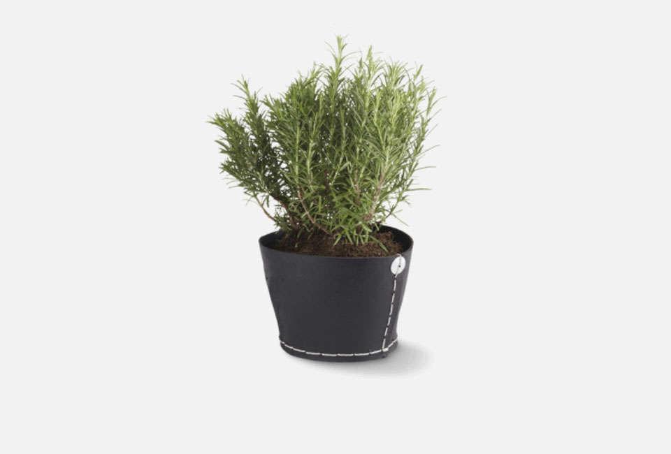 Merci Black Rubber Plant Pot