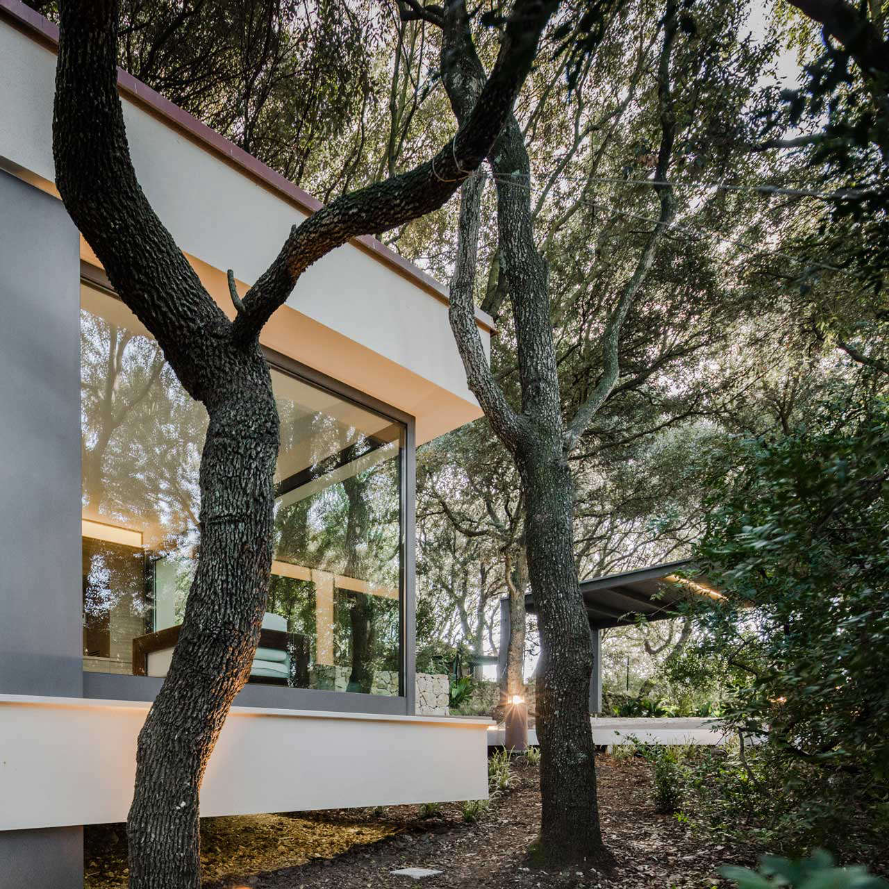 modern-house-in-forest-trees-sardinia