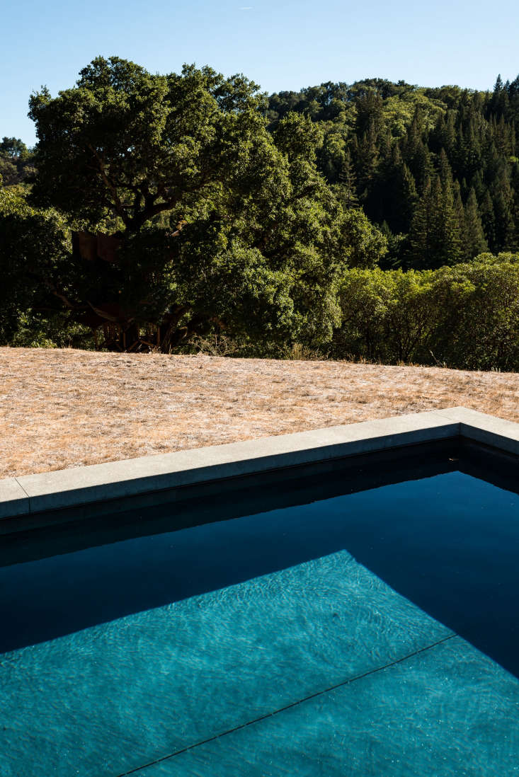 The raised concrete edge stops leaves and dirt from blowing straight into the pool, and Davis likes the idea of being able to sit on the edge of the pool and admire the landscape.