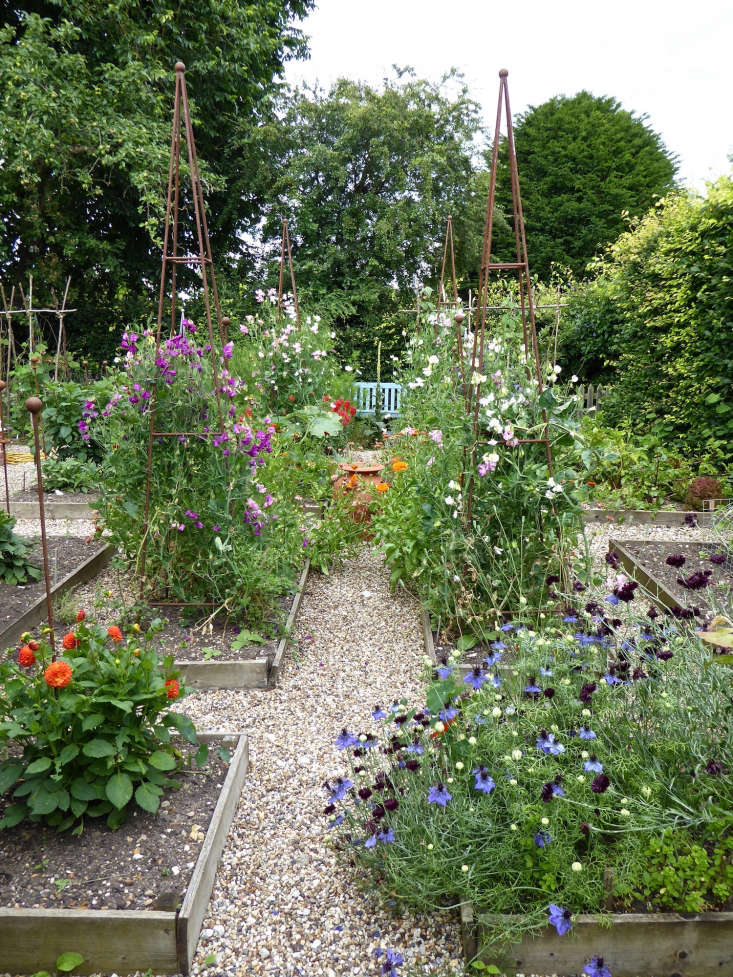 In a kitchen garden in Suffolk, England, flowers and edibles are intermingled in raised beds separated by gravel paths. See more in Behind the Hedges: Catherine Horwood's Hidden Kitchen Garden. Photograph by Clare Coulson.
