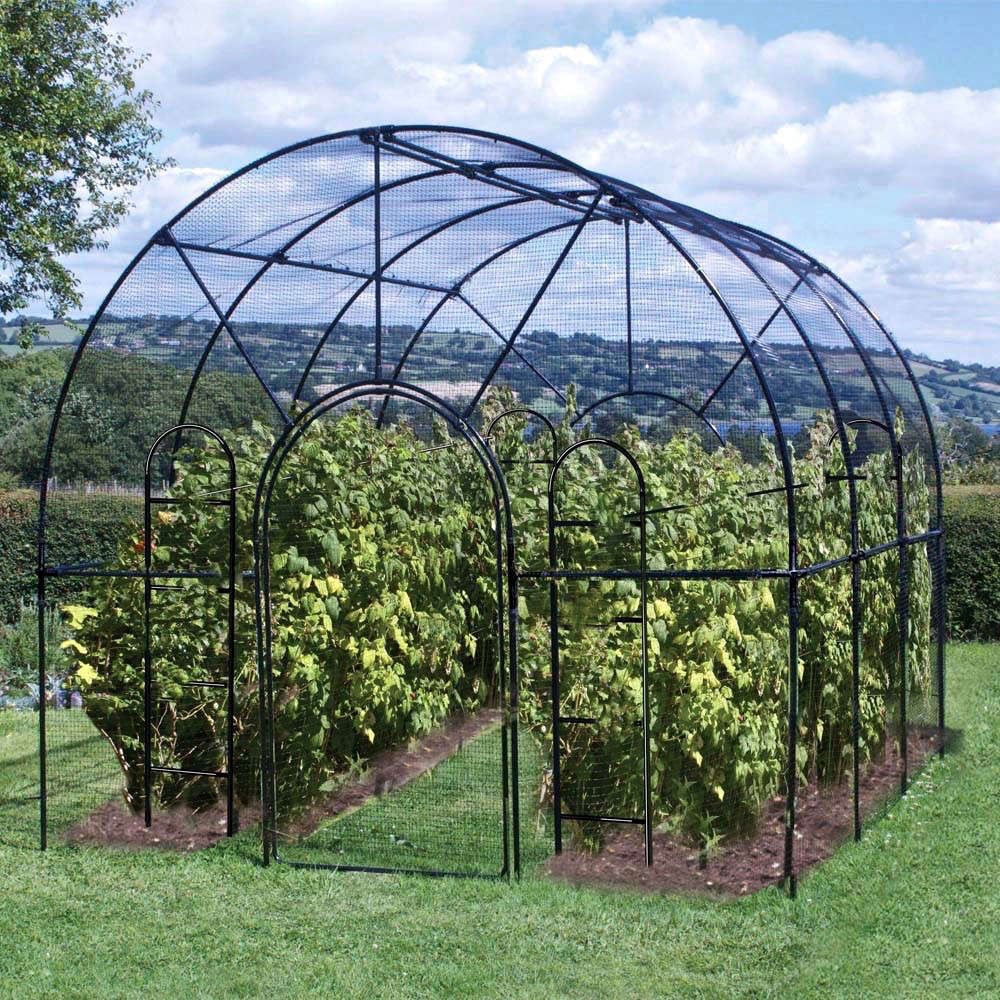 ARoman Fruit Cage in traditional gloss black is made of galvanized steel and at its peak is \10 feet high; £7\13 at Agriframes.