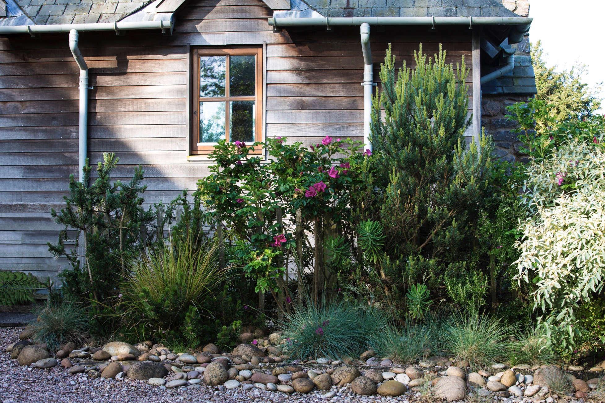 windy-devon-garden-facade-siding-gutters-gravel-clare-takacs-6