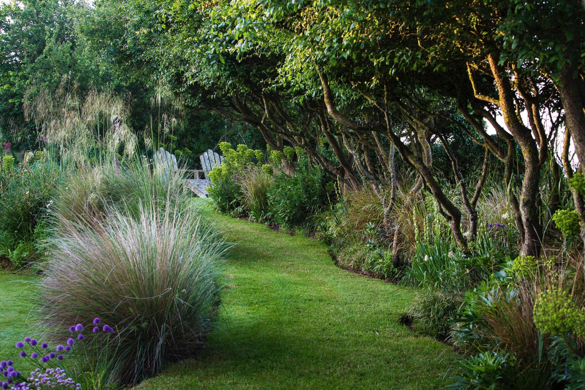 windy-devon-garden-grasses-trees-turf-lawn-clare-takacs-8