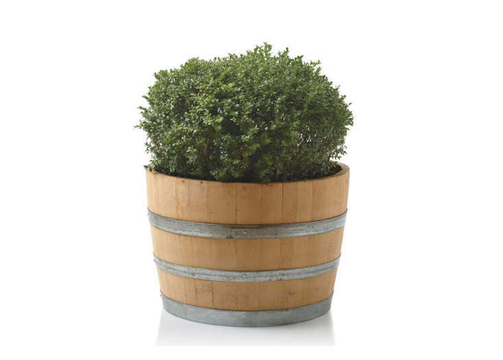 wine-barrel-planter-733-by-525
