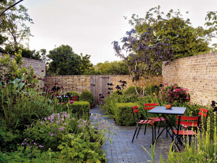 Jinny Blom&#8\2\17;s own garden on a hill inLondon. She had the back wall lowered to frame the trees and hasnot smothered the brick in climbers.