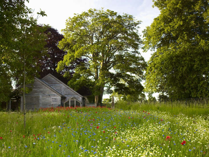 A meadow garden in the Cotswolds.