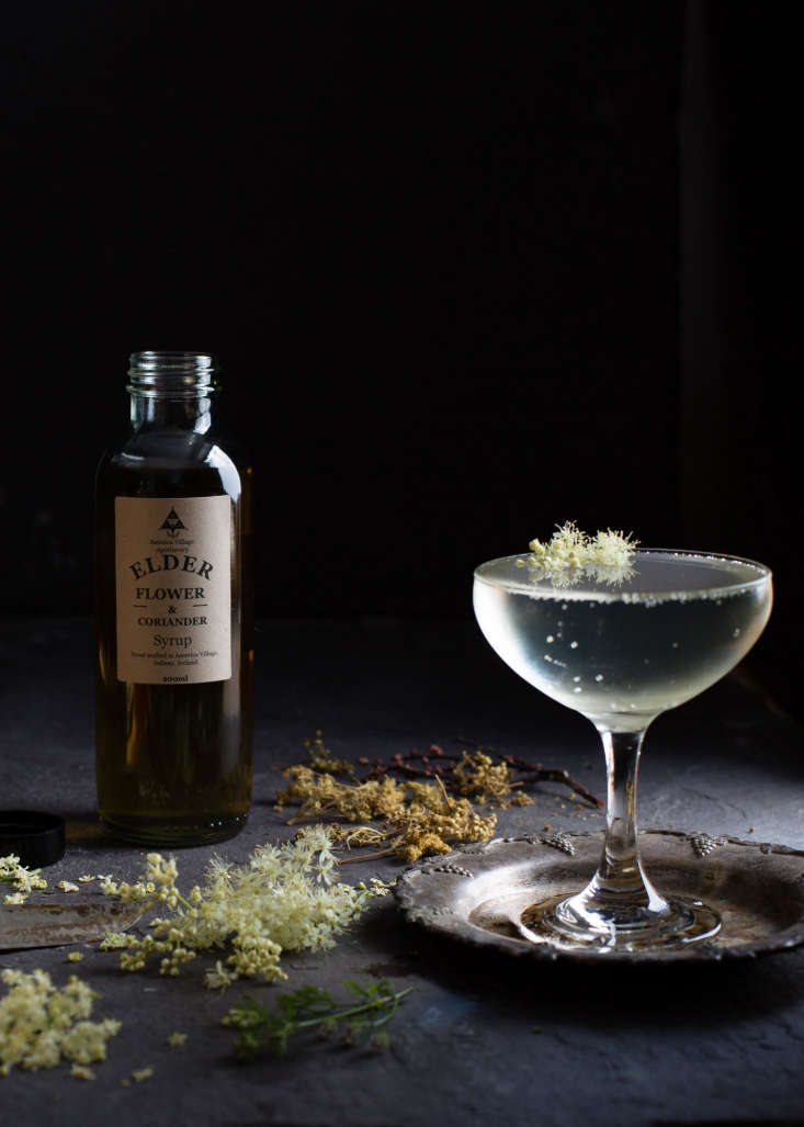 Elderflower and Coriander syrup, added to Prosecco, sold in-storeat Fortnum and Mason, along with Gorse, Wild Rose, Pine, and Tonic syrup.