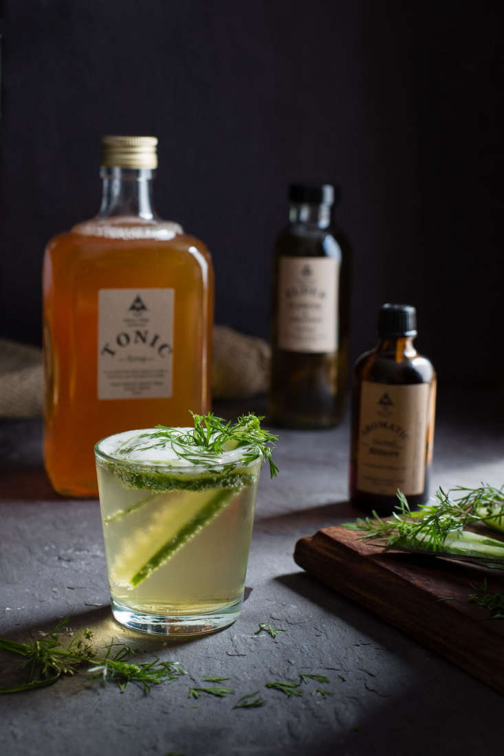 Tonic Syrup, for the perfect gin and tonic. Ingredients include: cinchona bark, citrus, and herbs.
