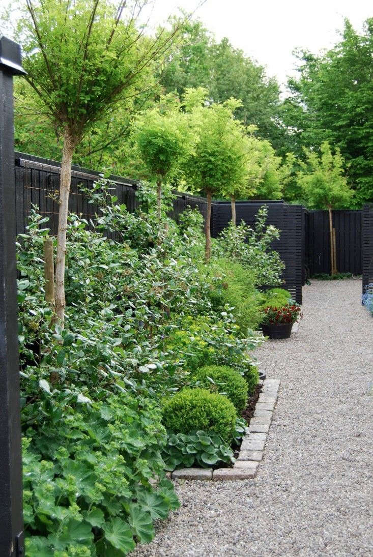 Maria of the gardening blog, Almbacken, installed a black fence to serve as backdrop to her Swedish garden and a clever cache for her garbage and recycling units. Photograph by Maria Dremo Sundstrom.