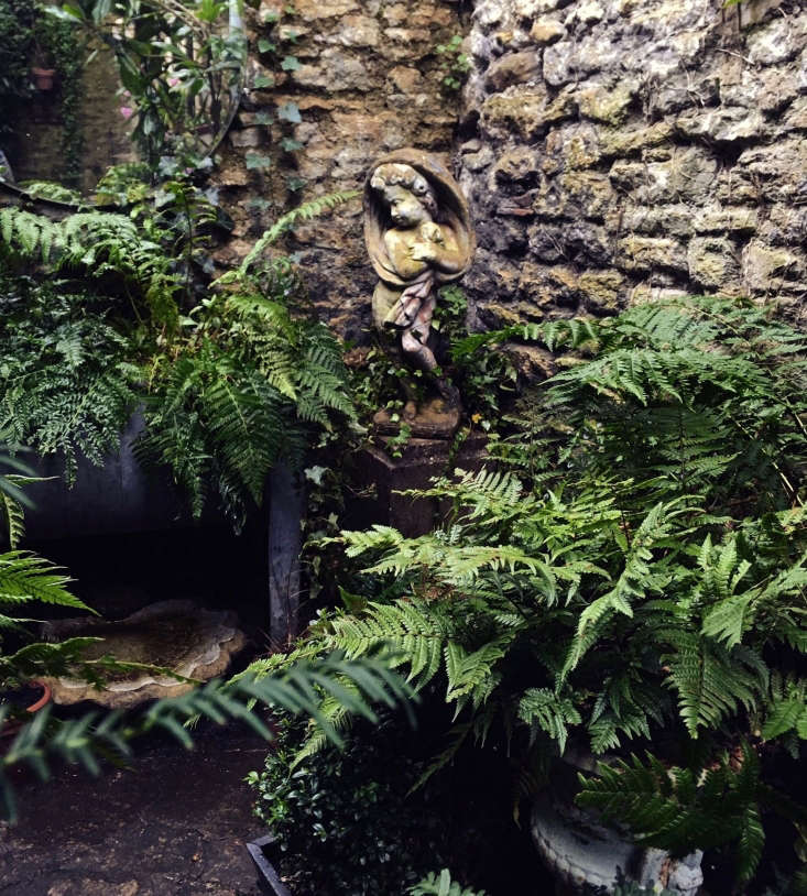 The rich texture and dramatic shapes in the courtyard are created largely with dramatic, shade-loving ferns.
