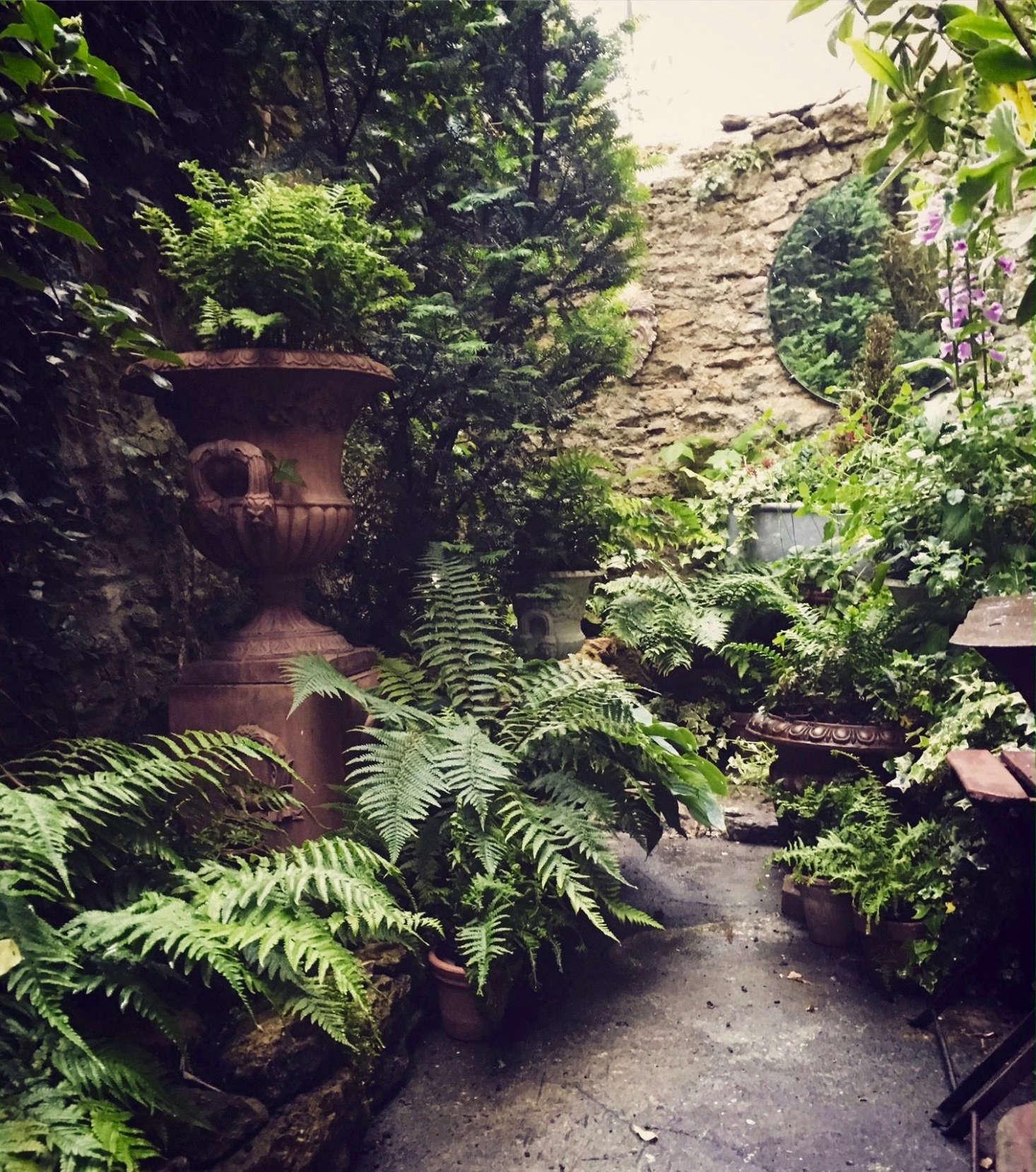 Ask The Expert Design Tips For A Shady Courtyard Garden Gardenista