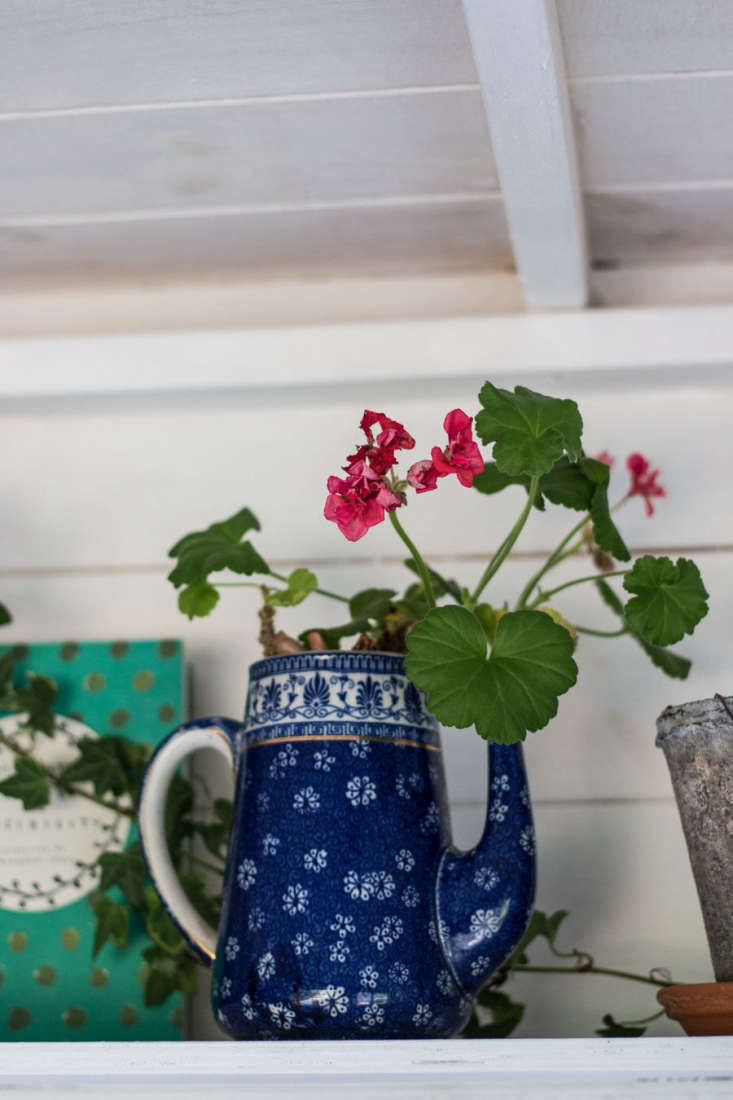 Jeska uses &#8\2\20;an old chipped teapot&#8\2\2\1; as a home for pelargoniums.&#8\2\20;Their bright colors and scented leaves make me smile, and they&#8\2\17;re easy to keep alive too,&#8\2\2\1; she says.