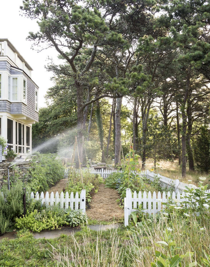 A rambling vegetable garden is held in check with low landscape edging made of pickets. Photograph by Matthew Williams for Gardenista. For more, see Gardenista Book Sneak Peek: The Architects&#8\2\17; Studio on Cape Cod.