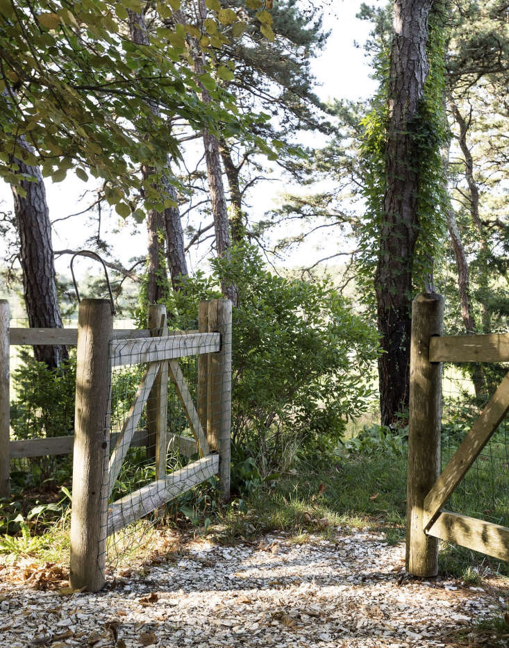 A split-rail gate backed with chicken wire welcomes visitors to a Wellfleet, Massachusetts garden designed by Tim Callis. Photograph by Matthew Williams for Gardenista.