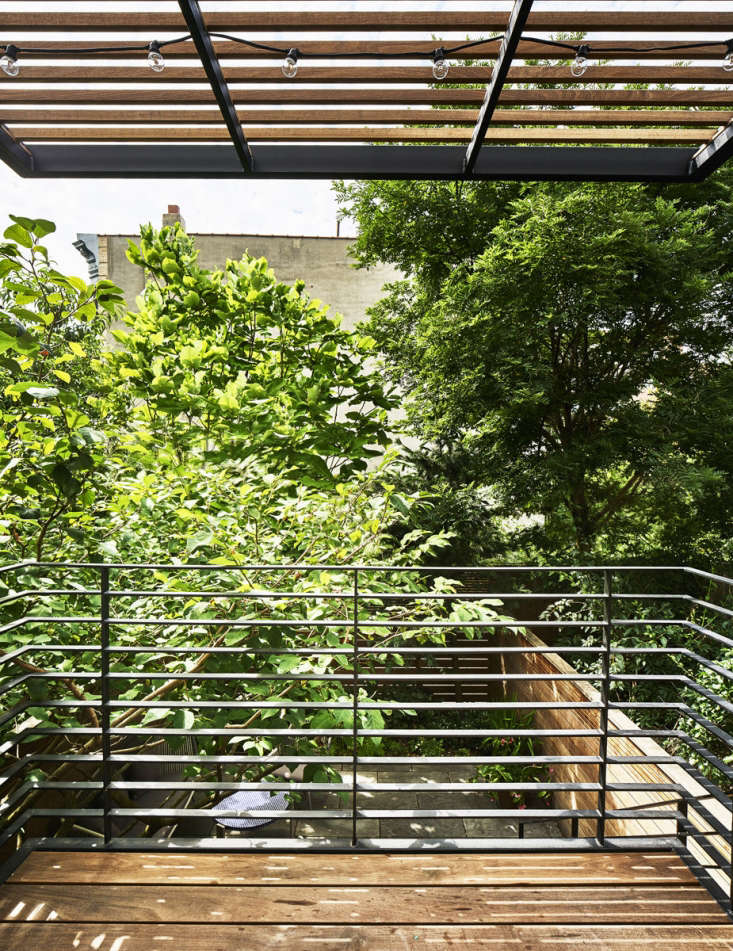 Hoyt cantilevered the ipe and steel deck to keepits support beams away from the roots of theSiebold's magnolia.