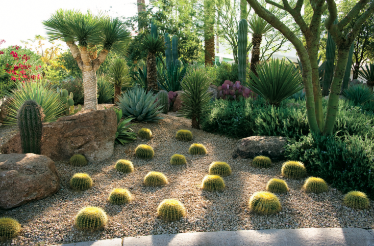 In a feature on landscape designer Brian Kissinger&#8\2\17;s own garden, Stockwell advises readers on how to recreate the look: