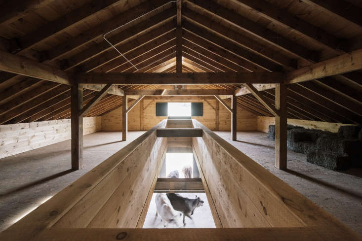 When needed, hay is dropped directly from the loft to the barn floor below through a framed chute. The opening also allows light from the hayloft skylight to fill the first floor.