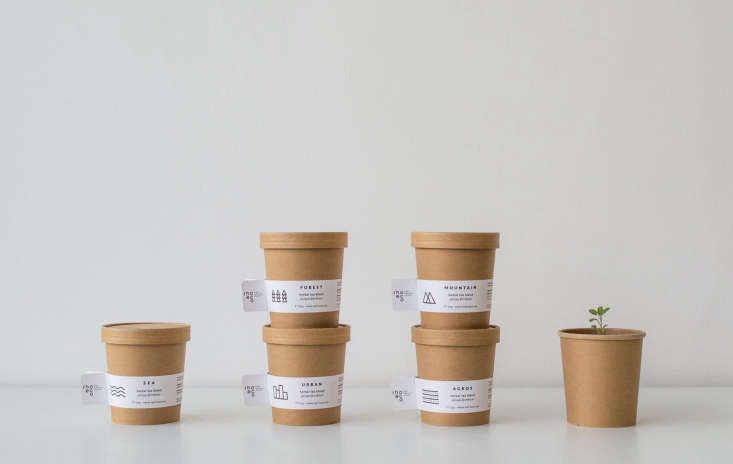 Other blends contain rose hip, mallow, fennel, sage, penny royal, and more. Each container comes with a seed stick affixed to the inside of the lid.