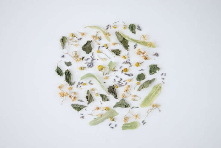 Rhoeco offers five loose-leaf herbal tea blends made from whole herbs, flowers, and berries. Sea, shown here, contains lemon balm, chamomile, lavender, and tilia (also known as linden).