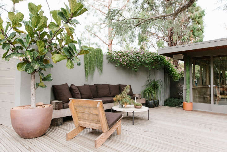 A large fiddle leaf fig tree (at Left) sections off one of the sitting areas. Glass sliding doors offer a seamless transition between the indoors and out, honoring architect Schindler&#8\2\17;s intention to create rooms that invite nature indoors.
