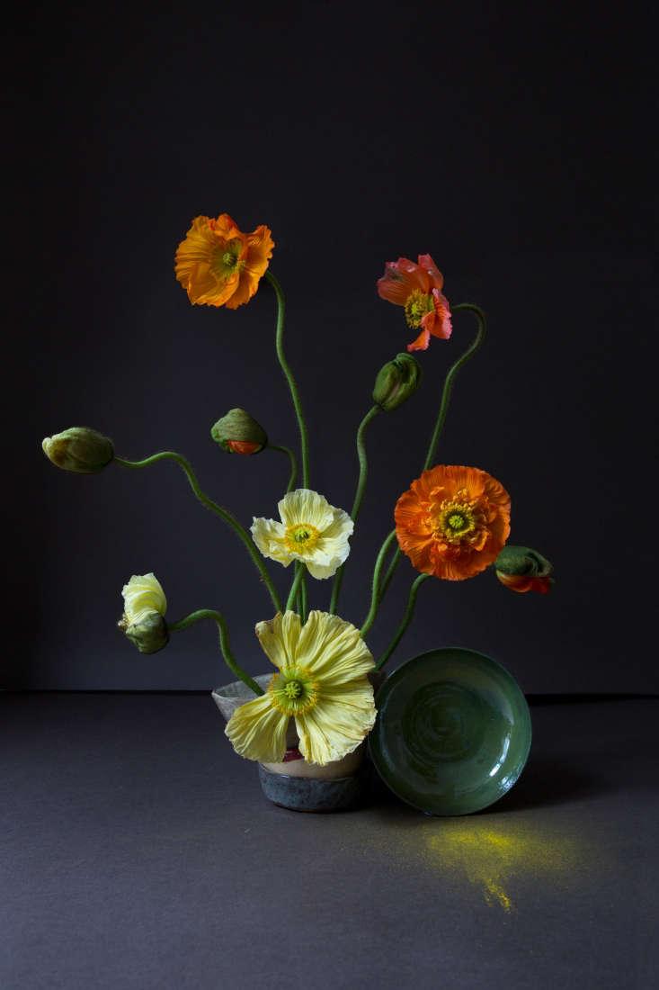 Poppies by London Flower School; a minimalist arrangement with maximum impact.