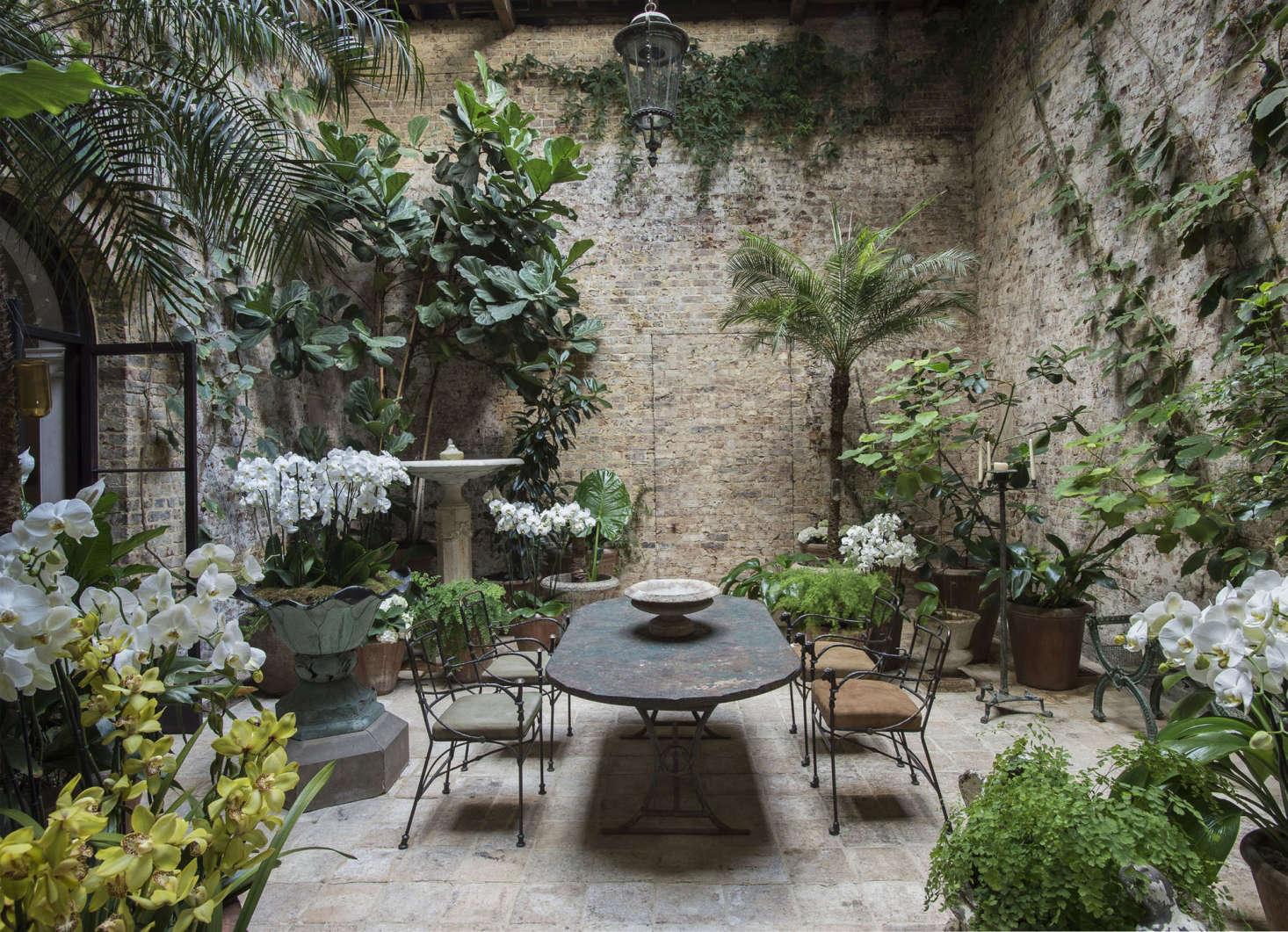 In her London conservatory, designer Rose Uniacke&#8