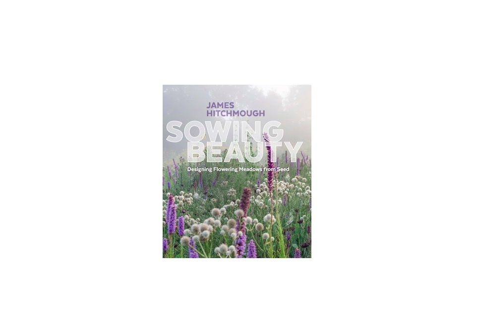 A copy of Sowing Beauty is $. from Amazon.