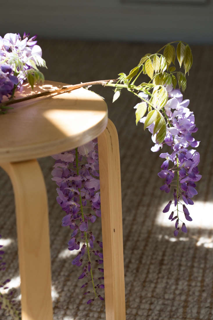 The wisteria arrangement lasted eightdays—a pretty good run—before starting to droop and look sad.